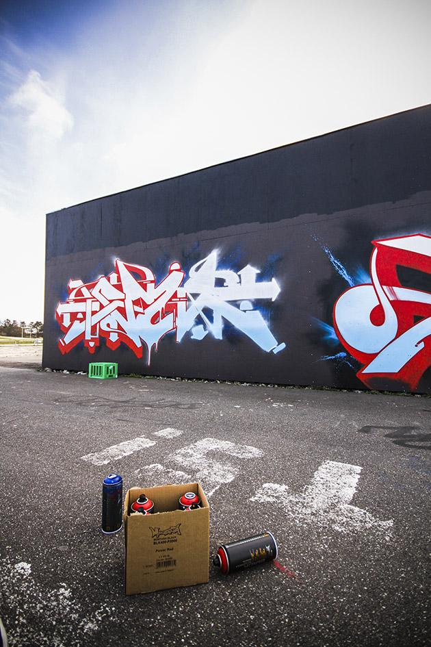 Roskilde_IMG_5675