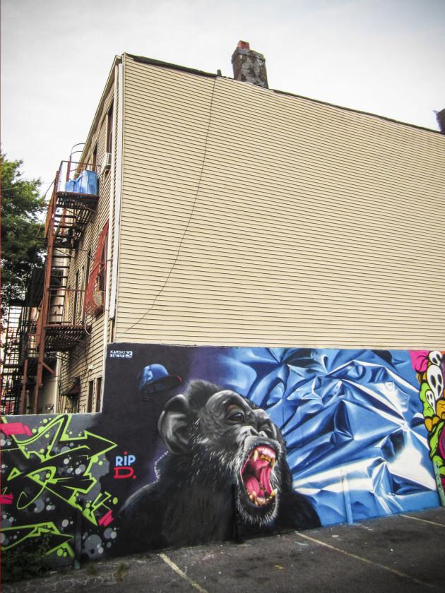 karskiandbeyond Brooklyn IMG_1117