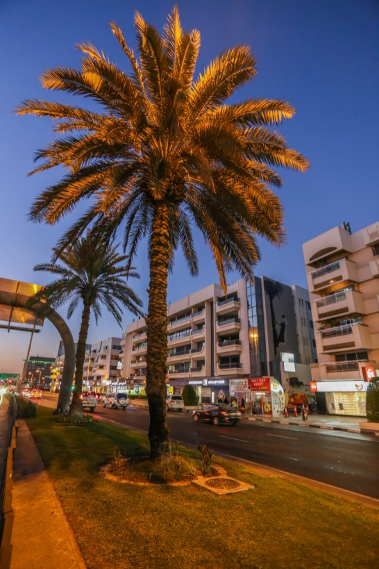 1612_Dubai_Street_Museum_Martin_whatson-0706