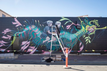 Colour Tumby Street Art Festival