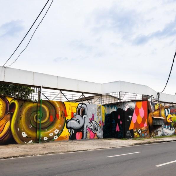 Copia de El Viaje del Caracol de Jose Avila Castillo por AMIR LUCKy