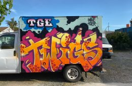 INTRODUCING GRAFFITI ARTIST TWIGS