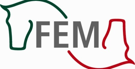 FEM_nuevo
