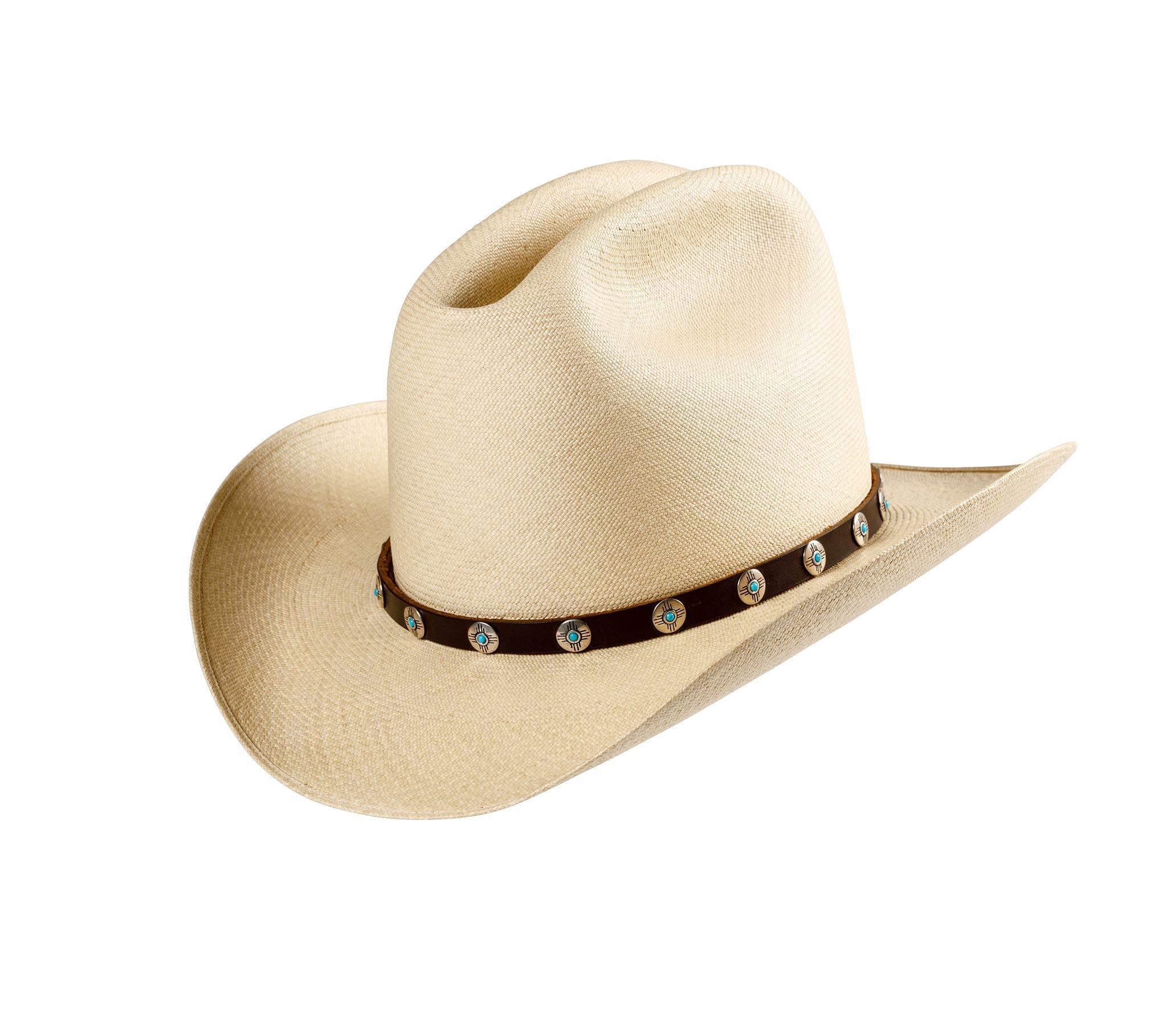 Alpine Panama Hat