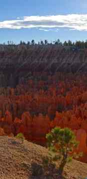 Bryce National Park - Utah - di Claudio Leoni
