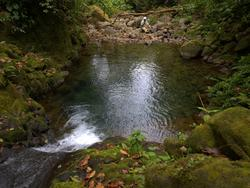 Swimming Hole 4-3-2009 9-39-26.jpg