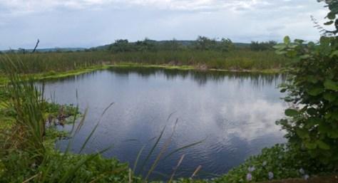 Full Catalina Sector Wetland - 07.14.2010 - 09.21.44_stitch
