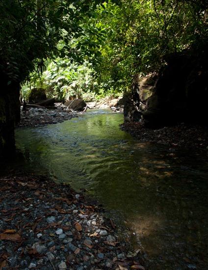 Rio Madrigal - 02.02.2010 - 11.34.14
