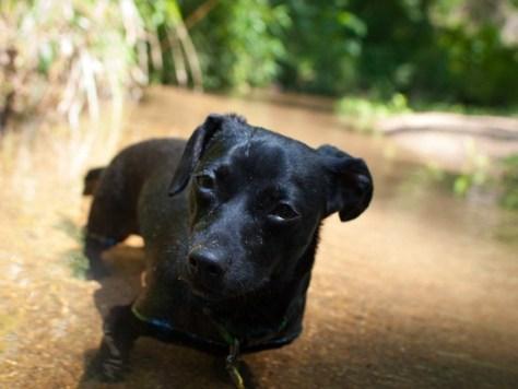 Cascade Springs with Amos - 05.19.2012 - 14.37.36