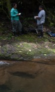 Collecting Bamboo and Miconia leaves - 20130701 - 7