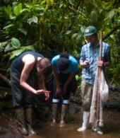 Sampling West Branch of Rio Java - 20130718 - 6