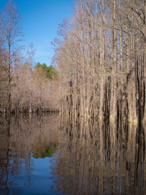 Camping and Kayaking at George Smith State Park - 03.20.2015 - 14.48.48