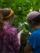 Katie and Adrea butterflies - 07.22.2015 - 08.57.49