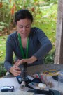 Birding at Finca Cantaros - 20130717 - 2
