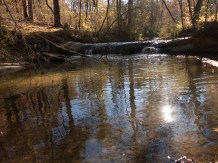 Camping at Mistletoe State Park - 11.23.2015 - 08.47.34