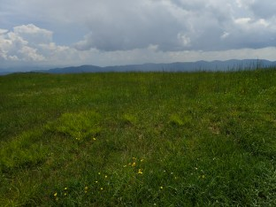 Max Patch Overlook - 05.31.2016 - 10.59.09