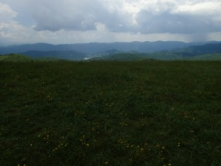 Max Patch Overlook - 05.31.2016 - 11.07.32