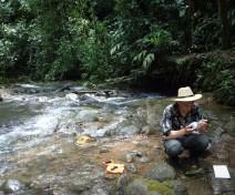 Hunter surveys moss diversity on boulders
