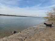 Little Tybee Island Camping - 01.15.2017 - 15.56.16