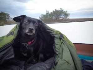 Little Tybee Island Camping - 01.16.2017 - 08.50.31