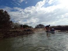 Little Tybee Island Camping - 01.16.2017 - 11.09.54