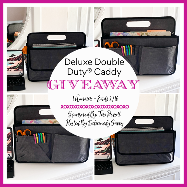 Deluxe Double Duty Caddy #Giveaway Ends 2/16 @TotesByTeri @deliciouslysavv