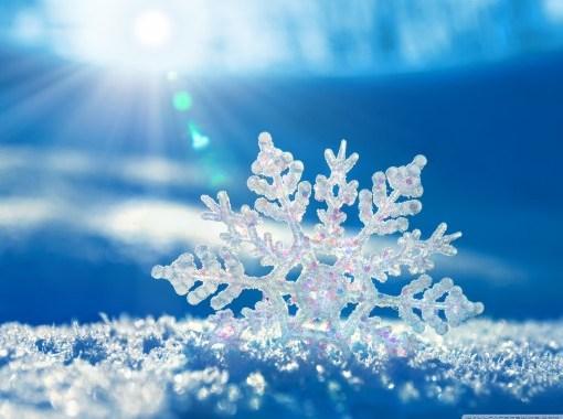 LİTTLE SNOWFLAKE