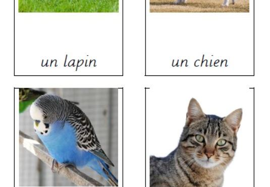 Three part cards – Animals in French