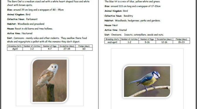 Garden birds fact sheets