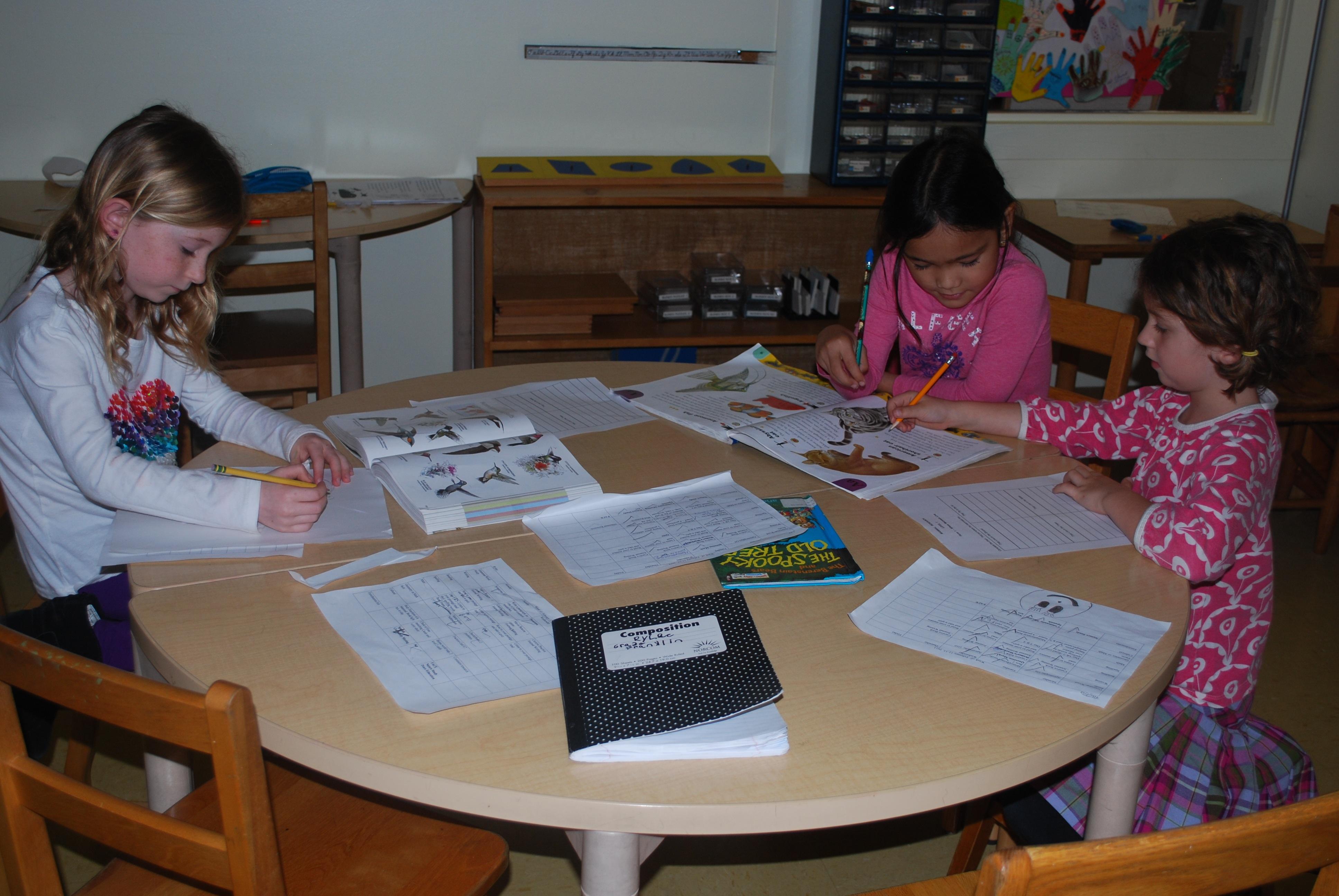 Montessori Elementary Lesson Conflict Resolution