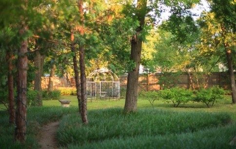 Exterior courtyard area Bed and Breakfast Norman Oklahoma