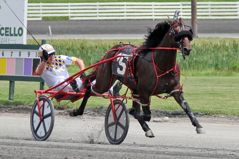 Jack Nation show winning his division of NYSS last season at Monticello Raceway as a 2-Year-Old