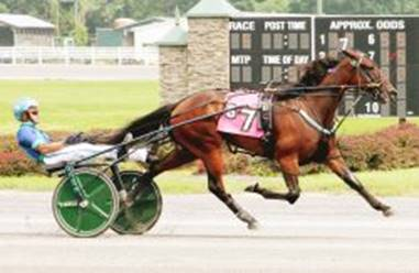 Ahundreddollarbill Seeks Fourth Track Record of the Year at Monticello