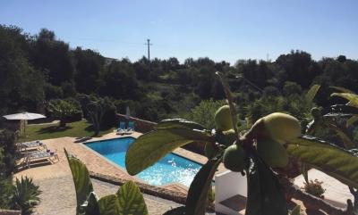 Montinho pool