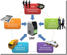 ERP_Consulting