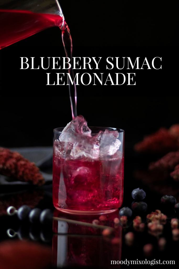 blueberry-sumac-lemonade-mocktail-drink-recipe-02-1198403