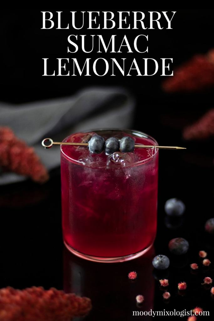 blueberry-sumac-lemonade-mocktail-drink-recipe-4401620