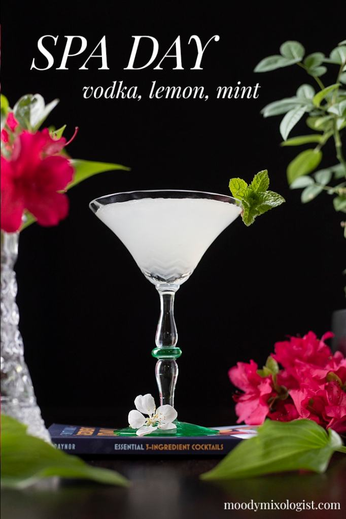 "View looking up at a martini glass with a white cocktail garnished with mint and text on the top reading ""Spa Day vodka lemon mint"""