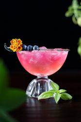 pink drink in a coupe glass with blueberries