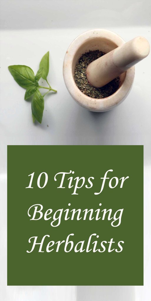 Tips for Beginning Herbalism