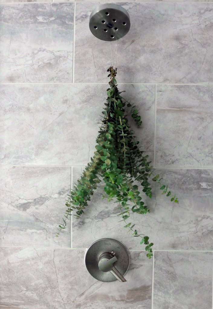 Hang a bouquet of eucalyptus at the base of your shower head for a refresh herbal shower ritual.