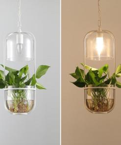 Water Plants Glass Pendant Light Pastoral ecological hanging lamp