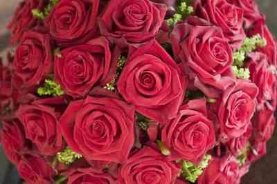 voorbeeld, voorbeelden, bloemen, boeket, bruidsboeket, bruidsboeketten, bruidsboeket bruid, trouwdag, bruiloft