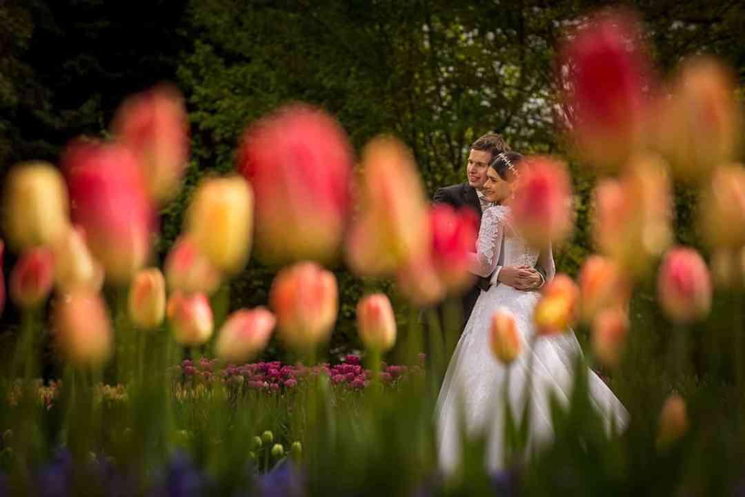 tulpen lisse bruidspaar fotograaf