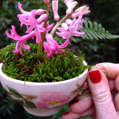 alternative-flower-arrangement-teacup