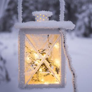 winter picnic ideas