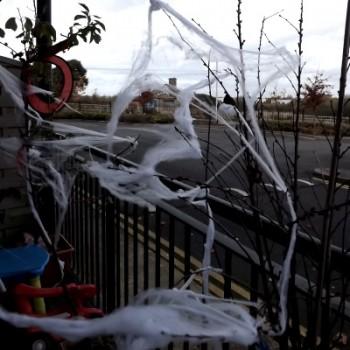 halloween-cobwebs