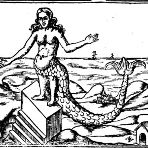 mermaid myths atargatis