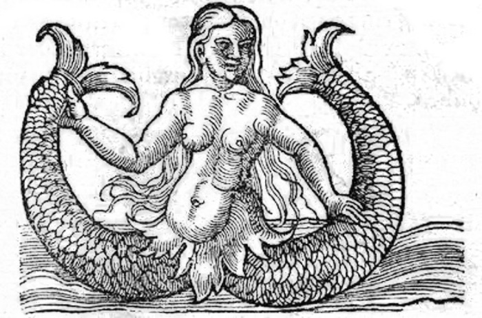mermaid myths two tails