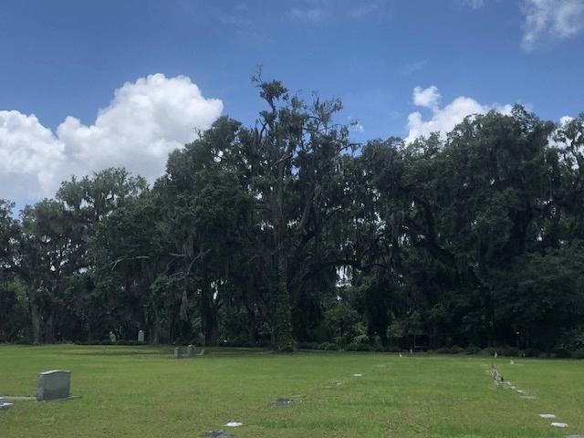 savannah georgia cemetery